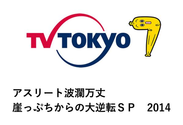 アスリート波瀾万丈 崖っぷちからの大逆転SP2014|テレビ東京